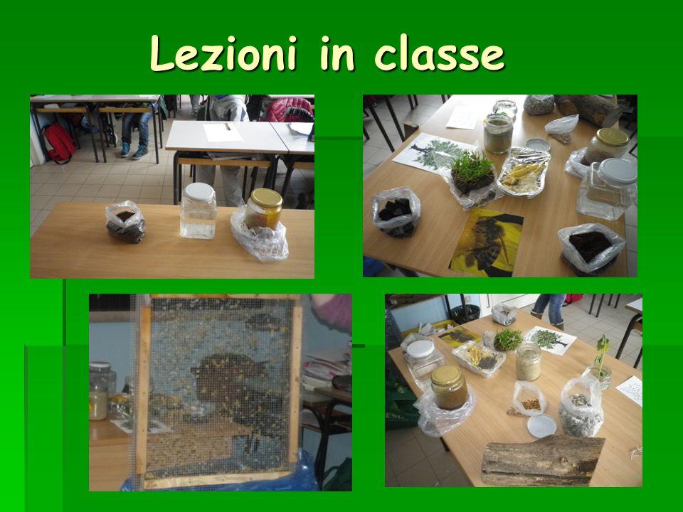 Lezioni in classe