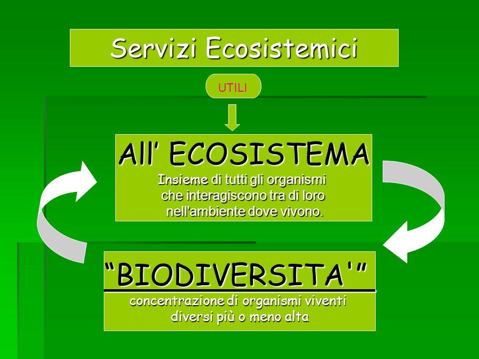 All' ECOSISTEMA BIODIVERSITA Servizi Ecosistemici