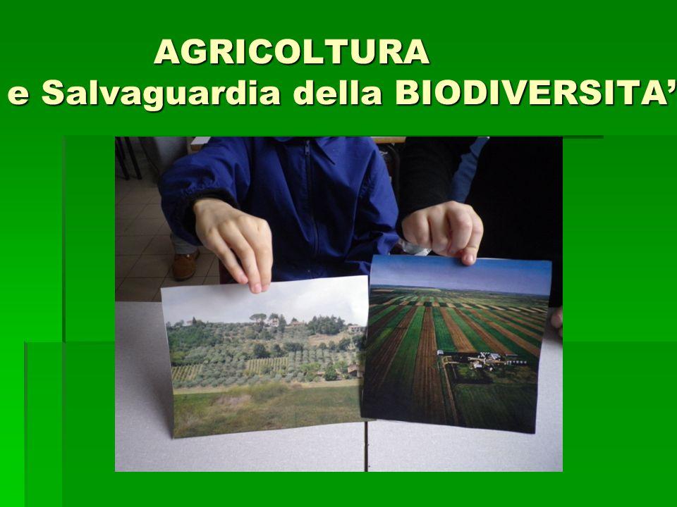 AGRICOLTURA e Salvaguardia della BIODIVERSITA'