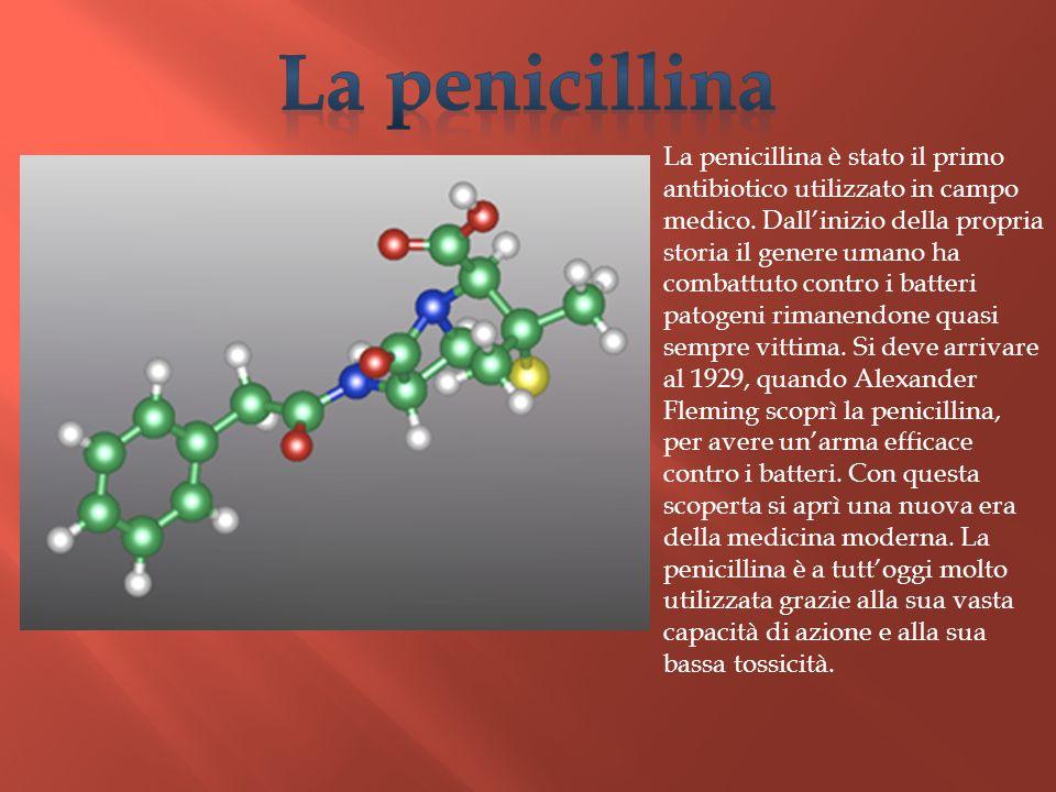 La penicillina