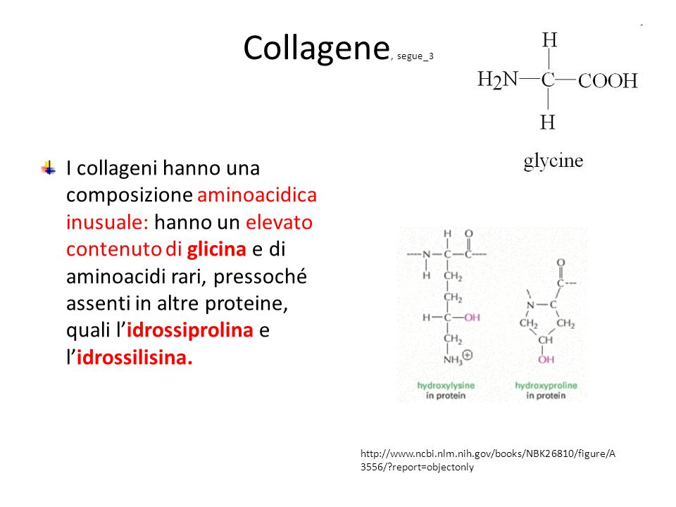 Collagene, segue_3