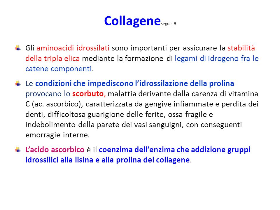 Collagenesegue_5
