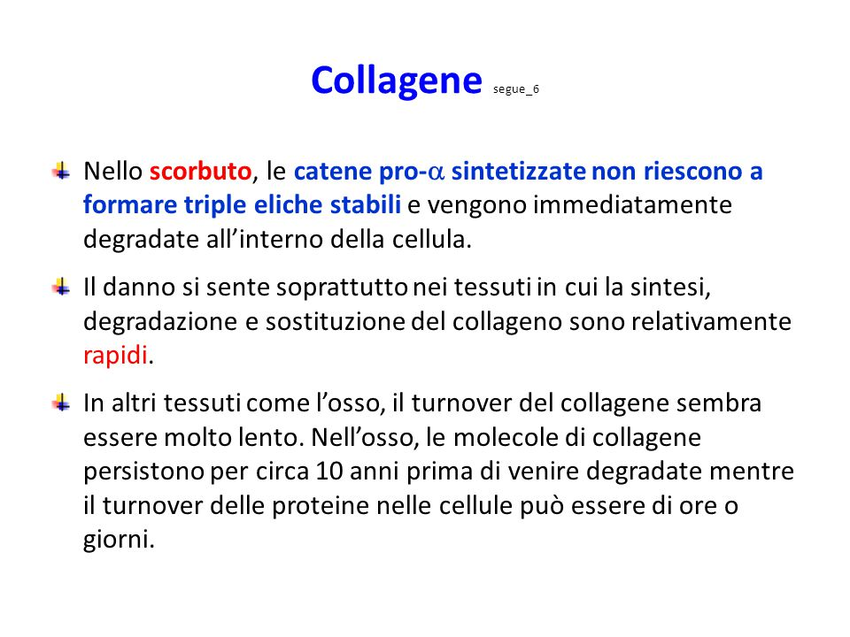 Collagene segue_6