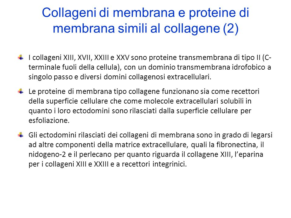Collageni di membrana e proteine di membrana simili al collagene (2)