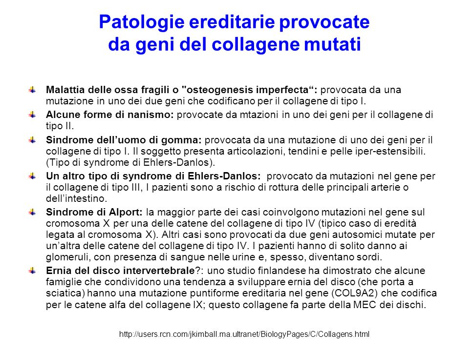 Patologie ereditarie provocate da geni del collagene mutati
