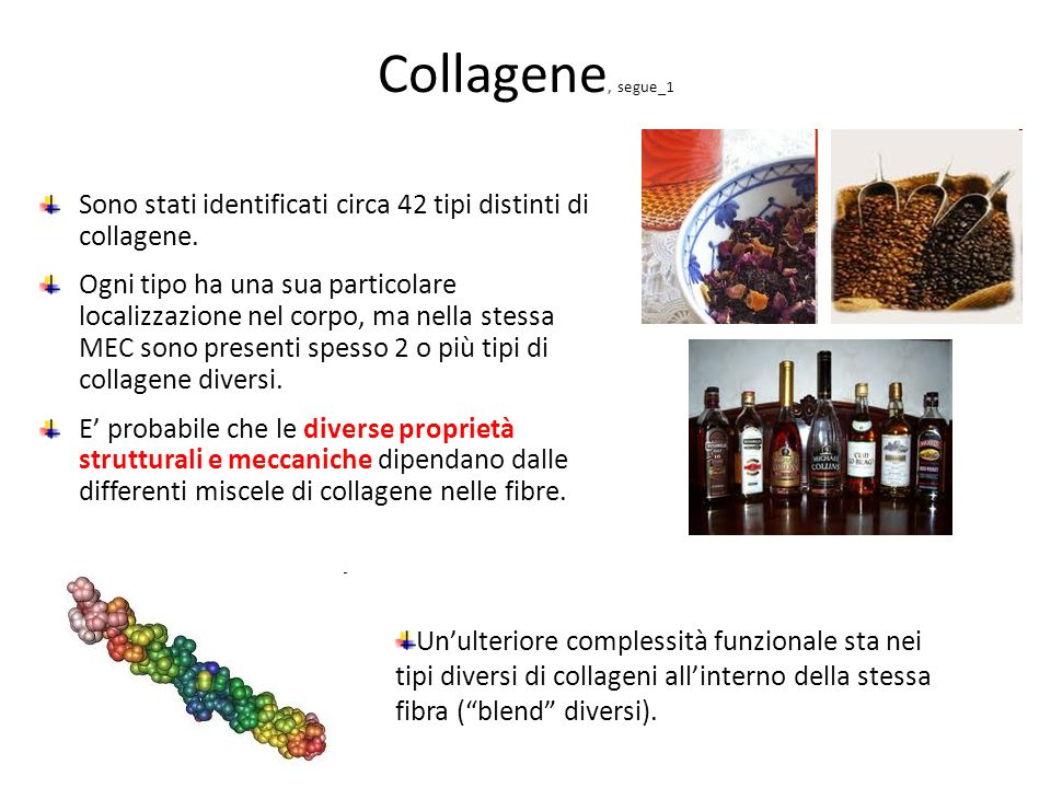 Collagene, segue_1 Sono stati identificati circa 42 tipi distinti di collagene.