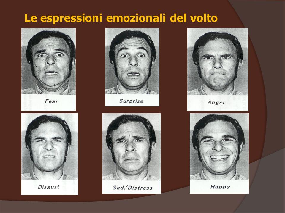 Le espressioni emozionali del volto