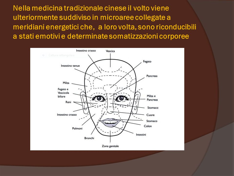 Nella medicina tradizionale cinese il volto viene ulteriormente suddiviso in microaree collegate a meridiani energetici che, a loro volta, sono riconducibili a stati emotivi e determinate somatizzazioni corporee