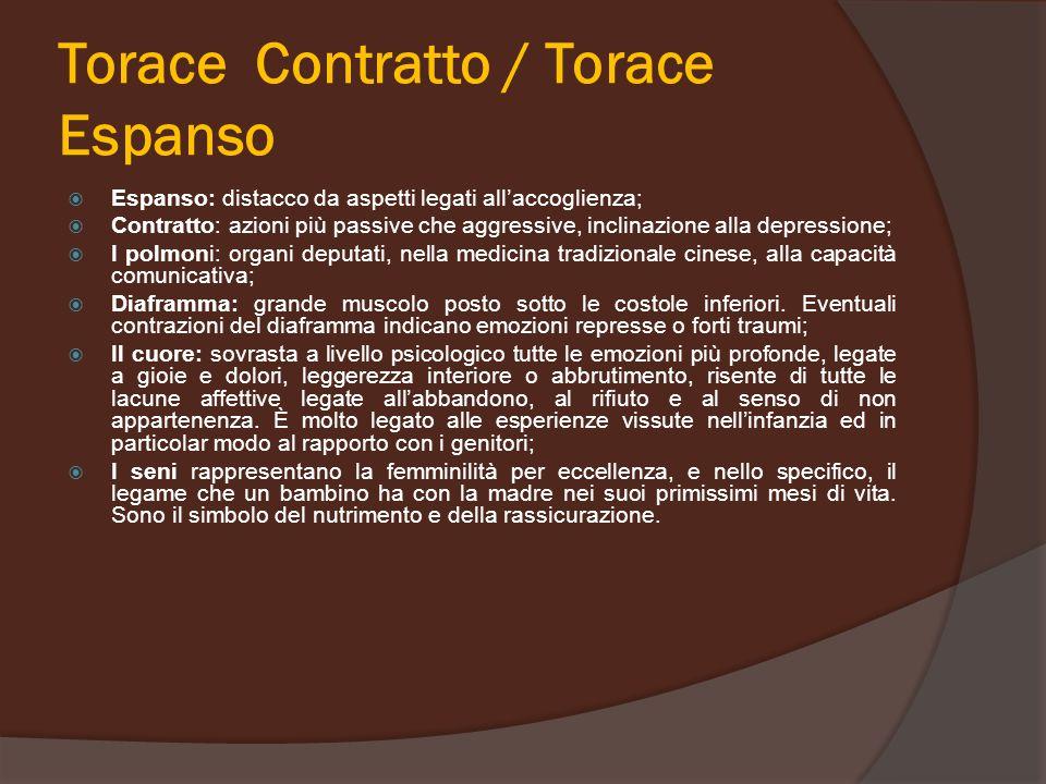 Torace Contratto / Torace Espanso