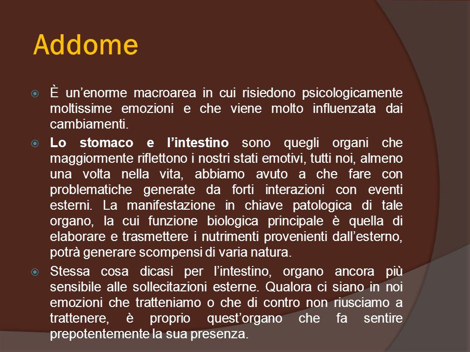 Addome È un'enorme macroarea in cui risiedono psicologicamente moltissime emozioni e che viene molto influenzata dai cambiamenti.