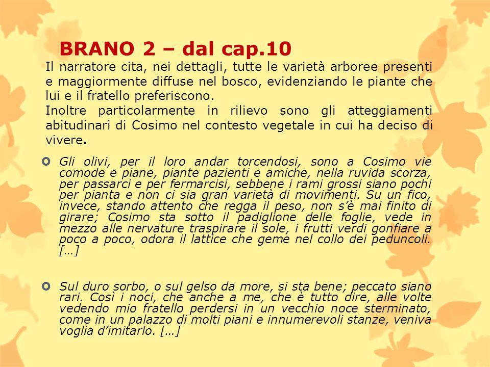 BRANO 2 – dal cap.10