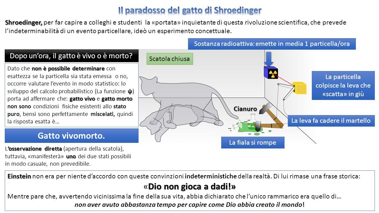 Il paradosso del gatto di Shroedinger