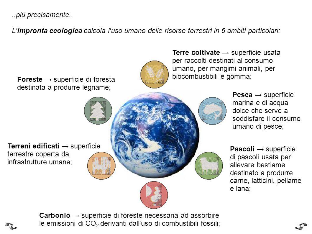 ..più precisamente.. L impronta ecologica calcola l uso umano delle risorse terrestri in 6 ambiti particolari: