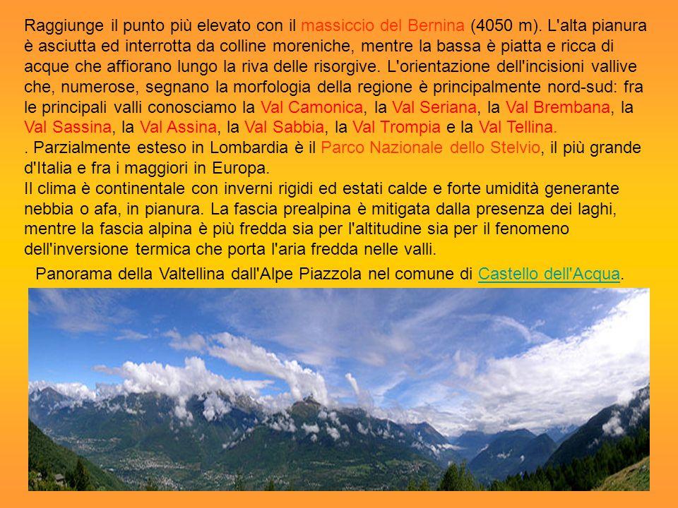Raggiunge il punto più elevato con il massiccio del Bernina (4050 m)