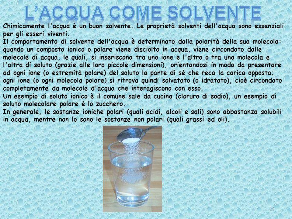 L'acqua come solvente Chimicamente l acqua è un buon solvente. Le proprietà solventi dell acqua sono essenziali per gli esseri viventi.