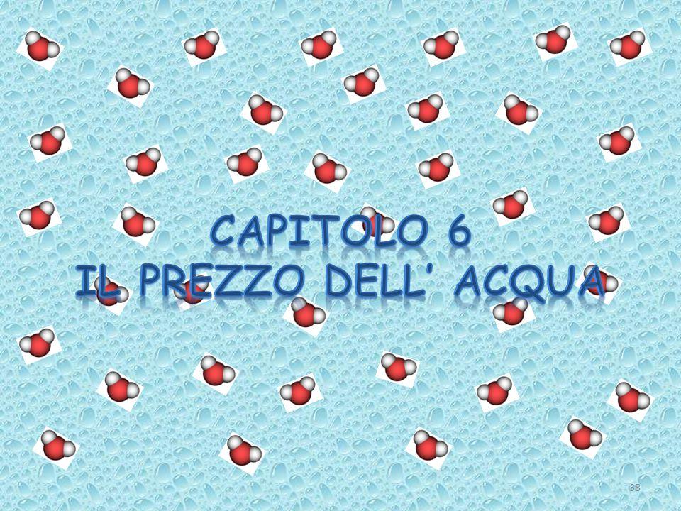 CAPITOLO 6 Il prezzo dell' acqua