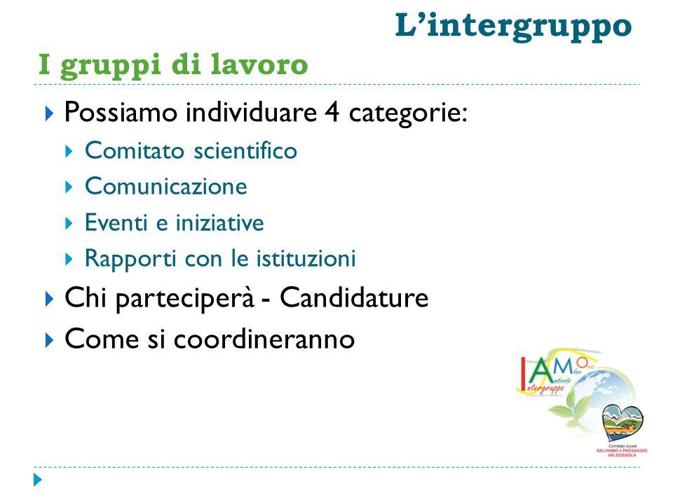L'intergruppo I gruppi di lavoro Possiamo individuare 4 categorie: