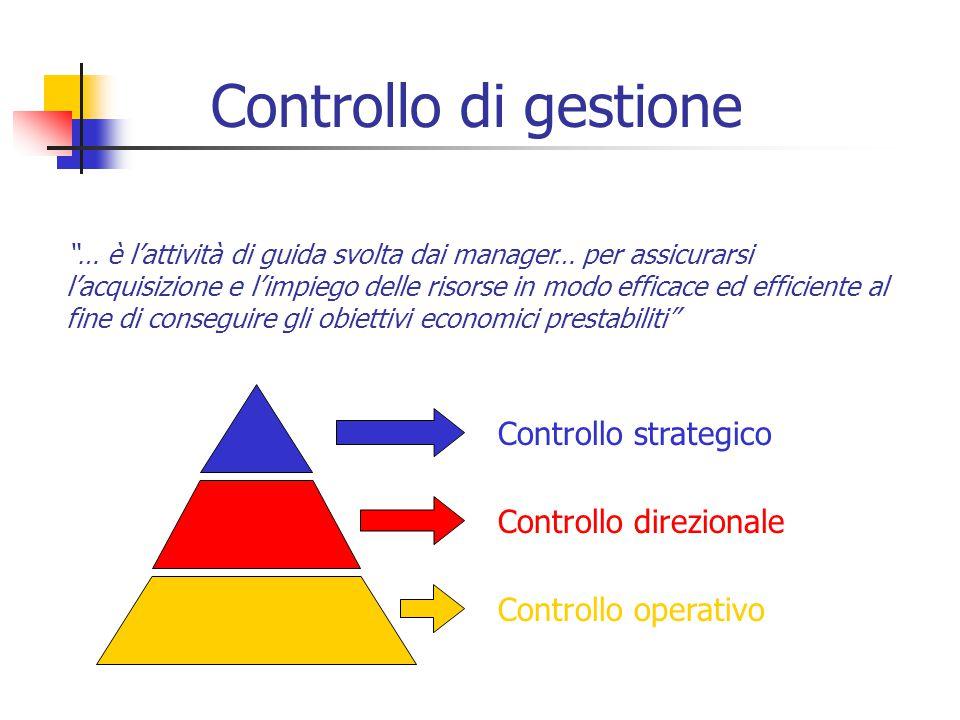 Controllo di gestione Controllo strategico Controllo direzionale
