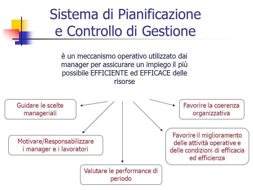 Sistema di Pianificazione e Controllo di Gestione