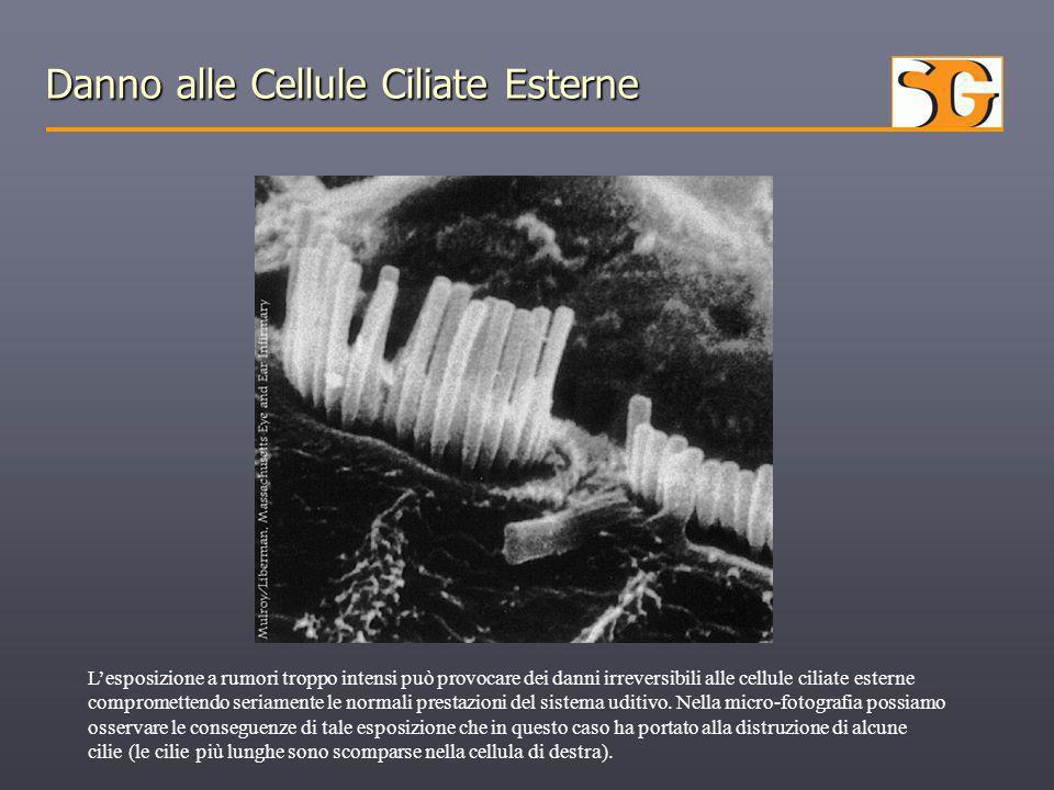 Danno alle Cellule Ciliate Esterne