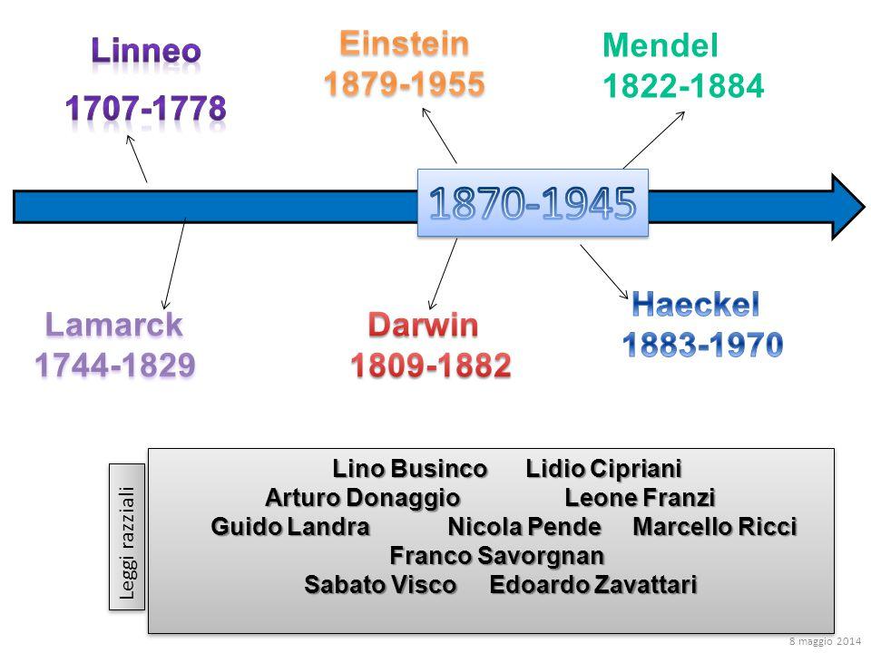 1870-1945 Linneo 1707-1778 Einstein 1879-1955 Mendel 1822-1884 Haeckel