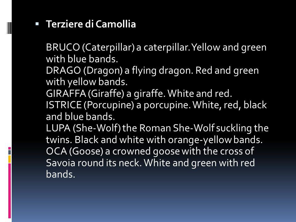 Terziere di Camollia BRUCO (Caterpillar) a caterpillar