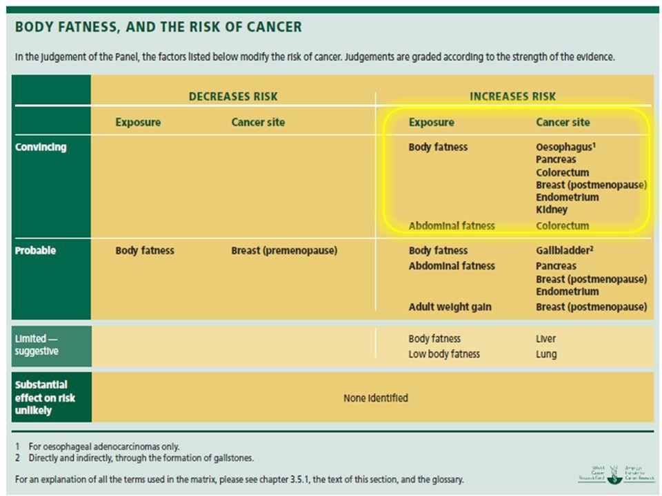 Gli studi sono in continuo aggiornamento; per ora si è visto come il sovrappeso sia una fattore di rischio per tumori a….