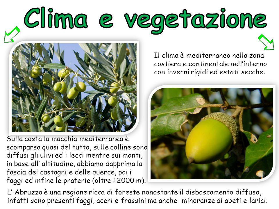 Clima e vegetazione Il clima è mediterraneo nella zona costiera e continentale nell'interno con inverni rigidi ed estati secche.