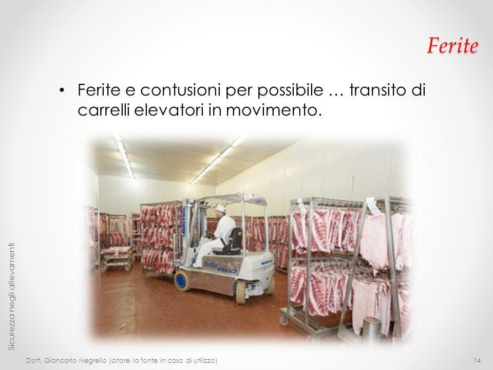 Ferite Ferite e contusioni per possibile … transito di carrelli elevatori in movimento. Sicurezza negli allevamenti.