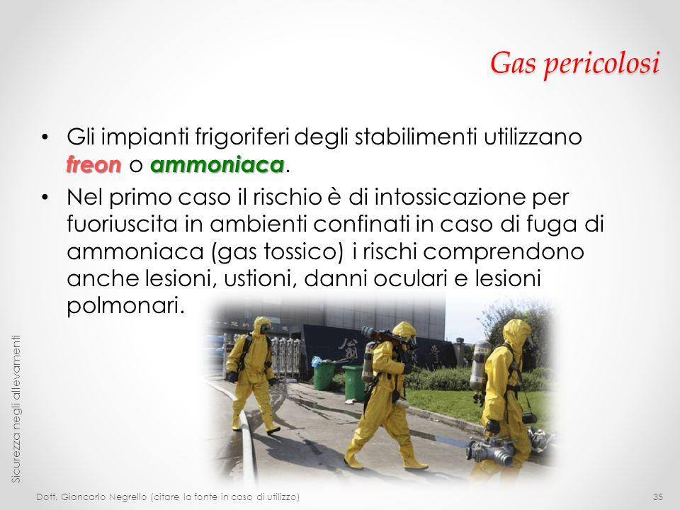 Gas pericolosi Gli impianti frigoriferi degli stabilimenti utilizzano freon o ammoniaca.
