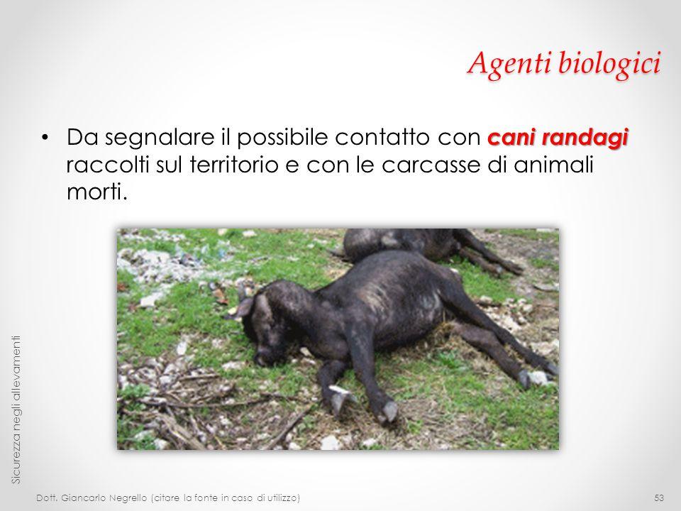 Agenti biologici Da segnalare il possibile contatto con cani randagi raccolti sul territorio e con le carcasse di animali morti.