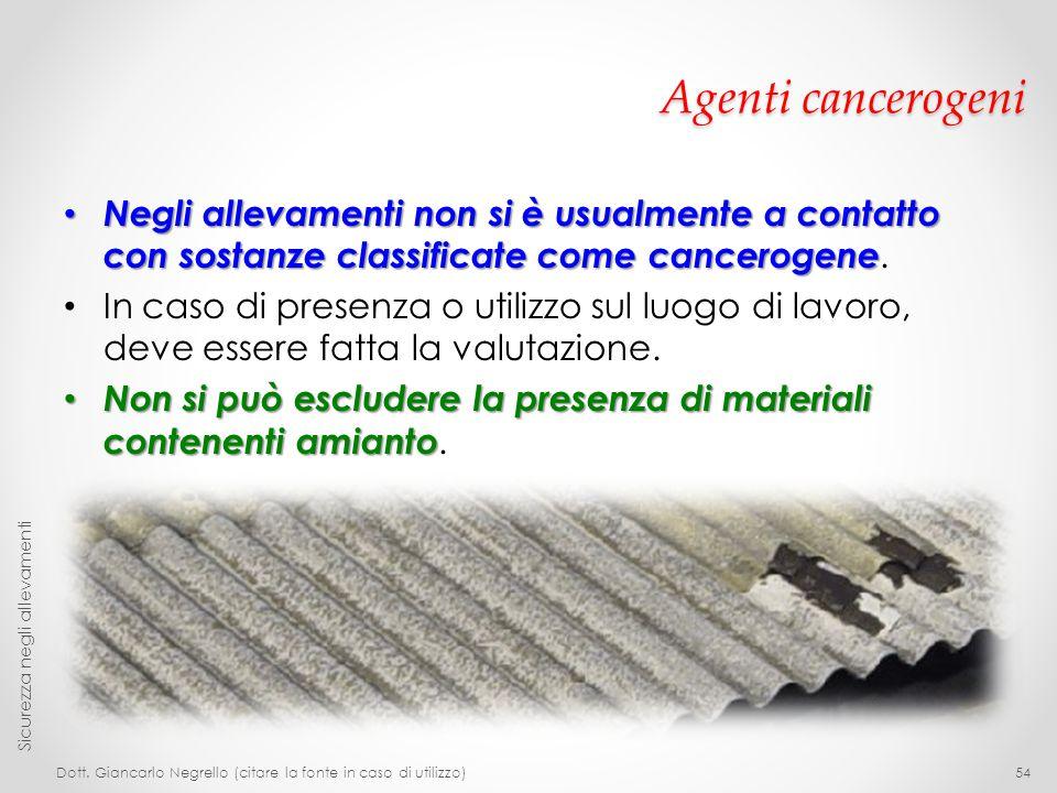 Agenti cancerogeni Negli allevamenti non si è usualmente a contatto con sostanze classificate come cancerogene.