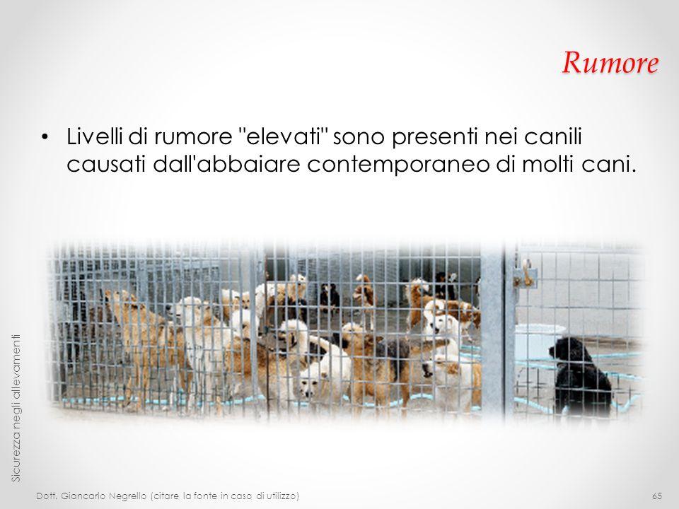 Rumore Livelli di rumore elevati sono presenti nei canili causati dall abbaiare contemporaneo di molti cani.