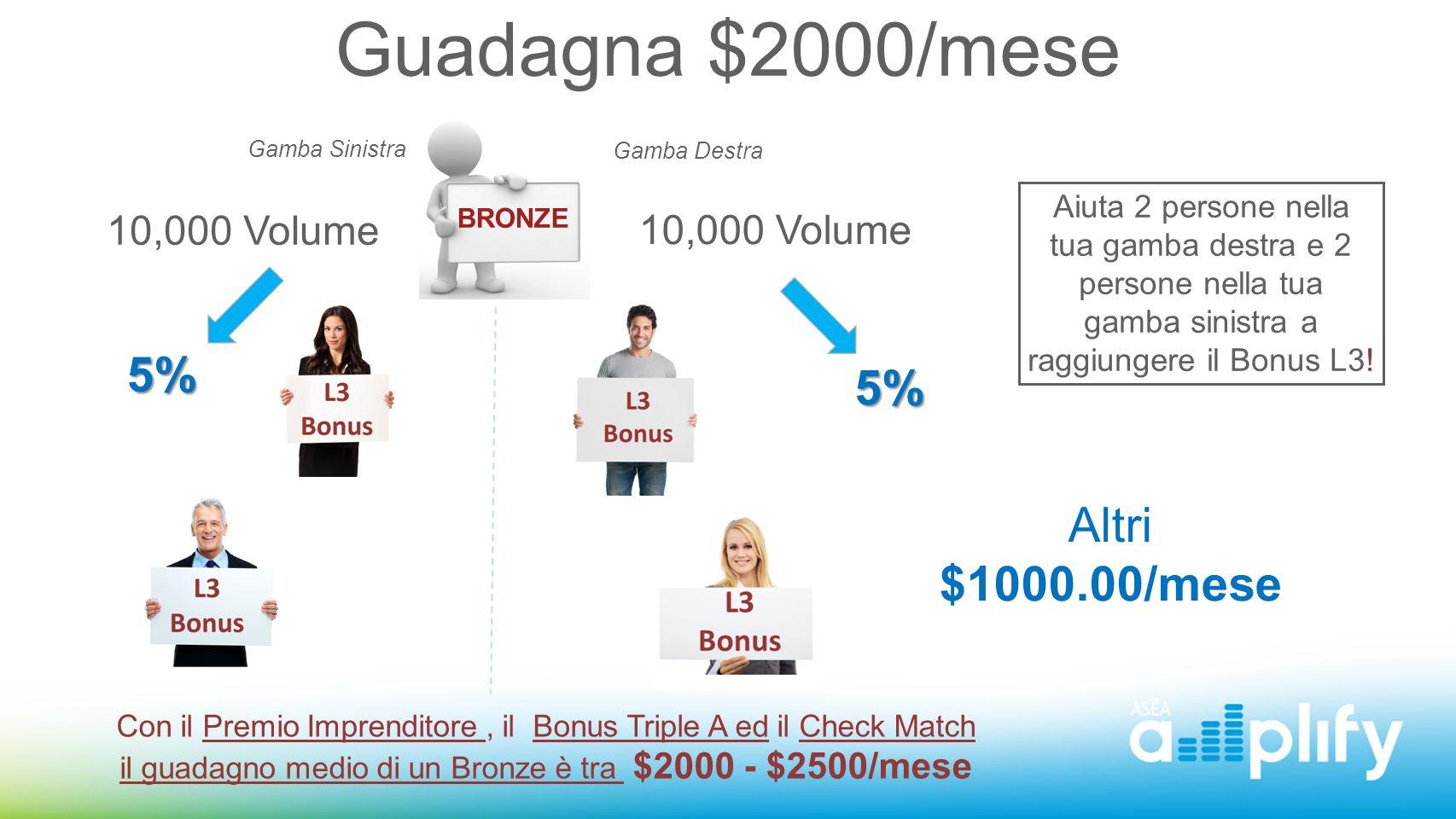 Guadagna $2000/mese 5% 5% Altri $1000.00/mese 10,000 Volume