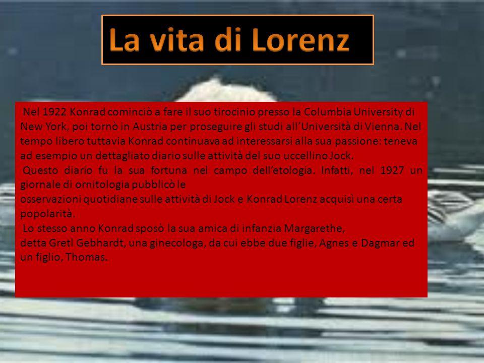 La vita di Lorenz