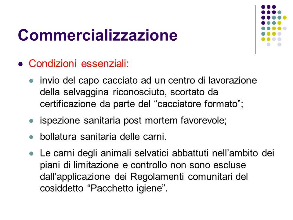 Commercializzazione Condizioni essenziali: