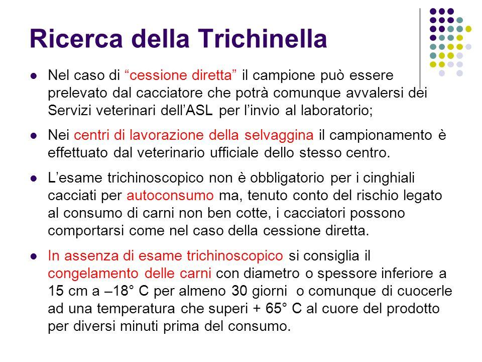 Ricerca della Trichinella