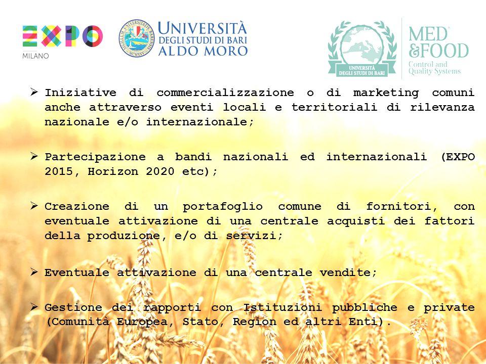 Iniziative di commercializzazione o di marketing comuni anche attraverso eventi locali e territoriali di rilevanza nazionale e/o internazionale;