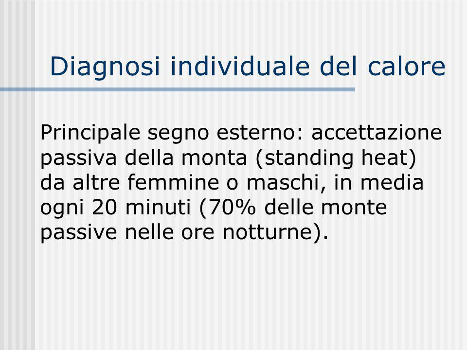 Diagnosi individuale del calore