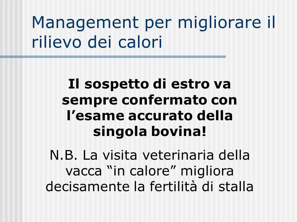 Management per migliorare il rilievo dei calori