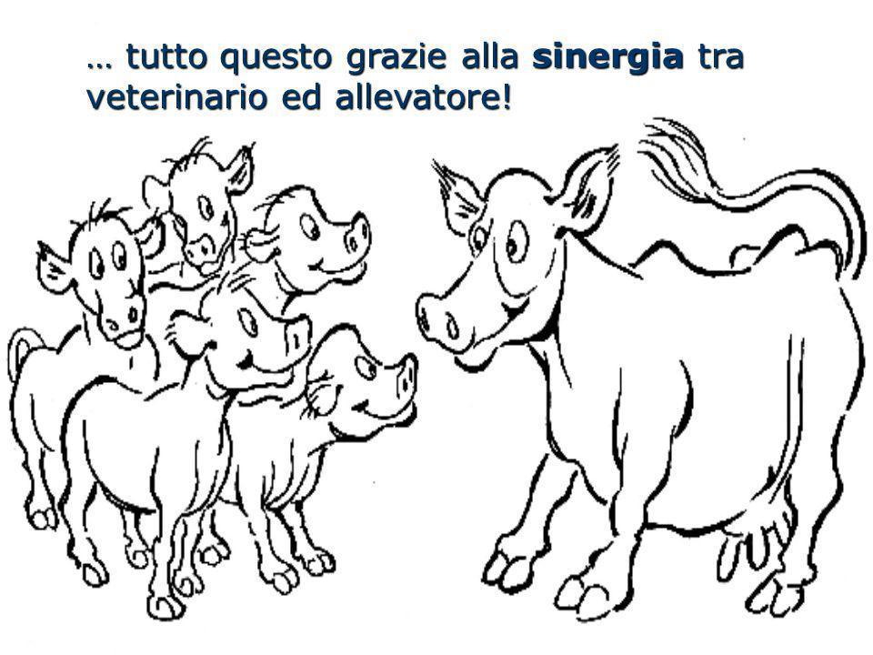 … tutto questo grazie alla sinergia tra veterinario ed allevatore!