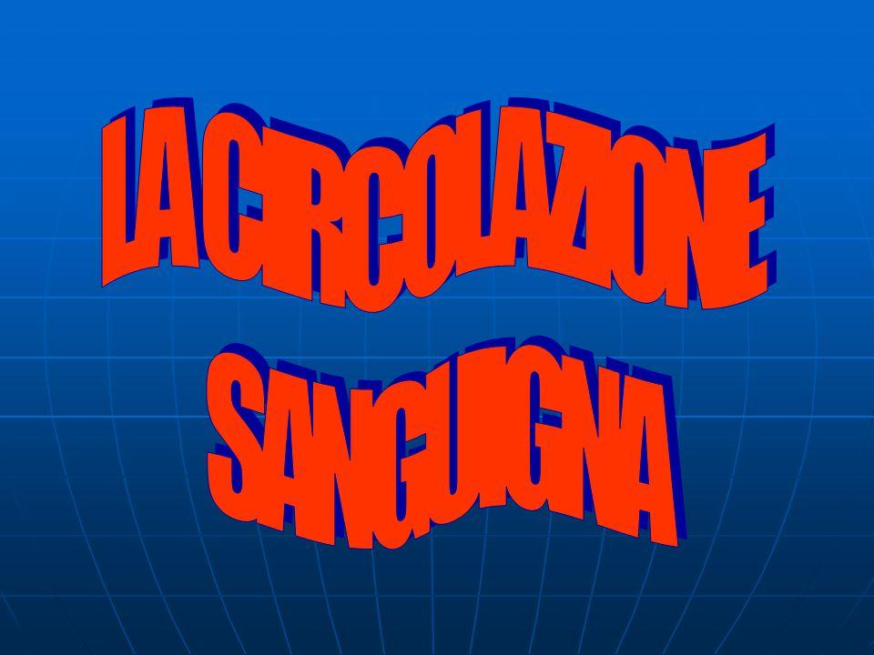 LA CIRCOLAZIONE SANGUIGNA