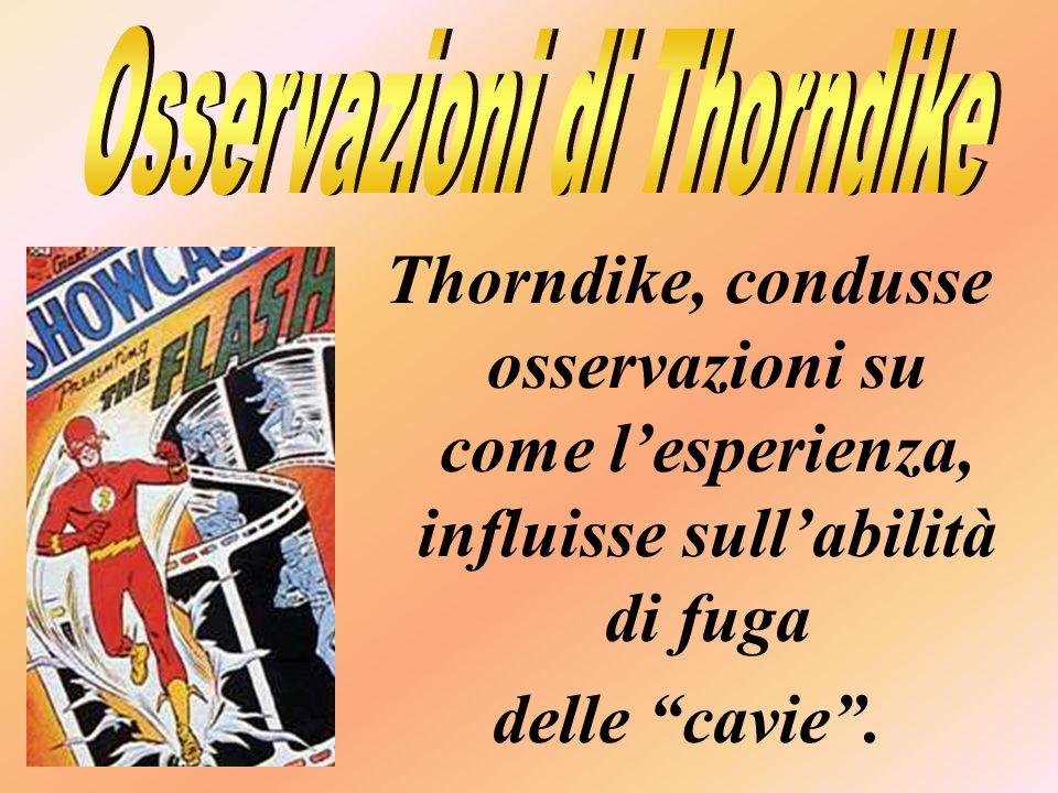 Osservazioni di Thorndike