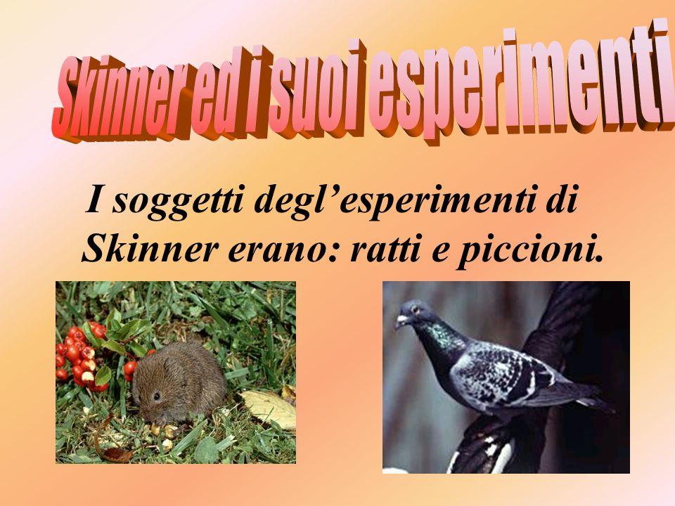 I soggetti degl'esperimenti di Skinner erano: ratti e piccioni.