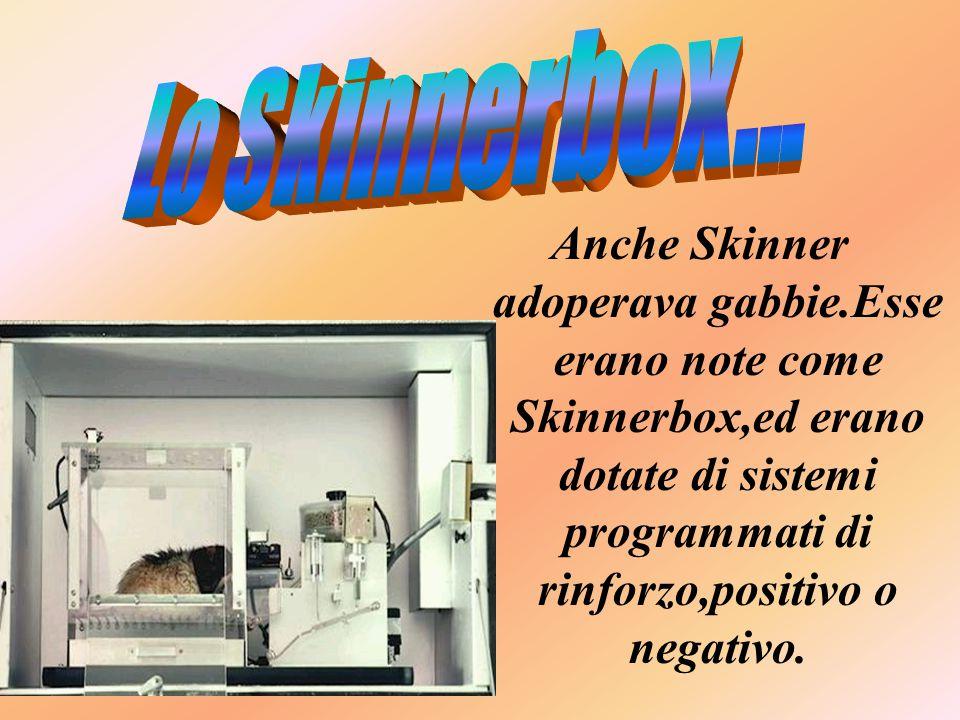 Lo Skinnerbox...