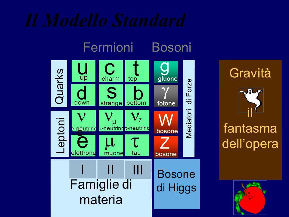 u c t s e t Il Modello Standard d b m g g ne n n W Z Fermioni Bosoni