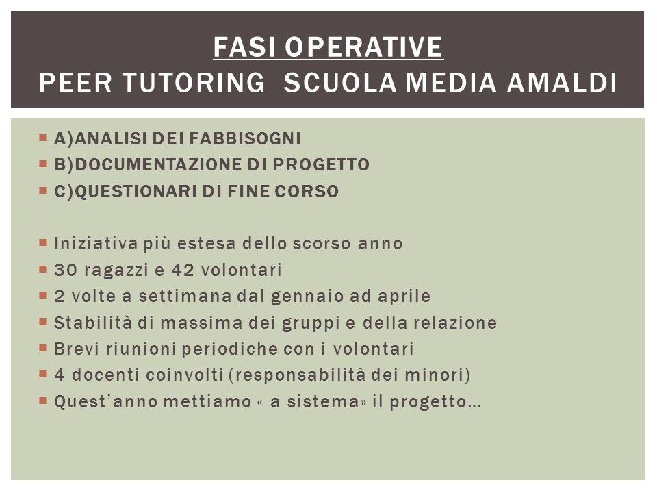 FASI OPERATIVE Peer tutoring scuola media Amaldi