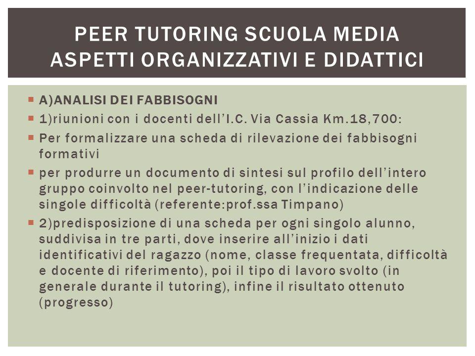 Peer tutoring scuola media aspetti organizzativi e didattici