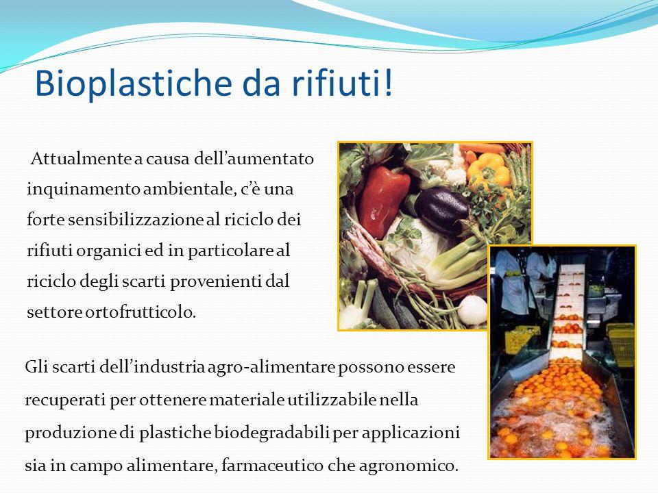 Bioplastiche da rifiuti!