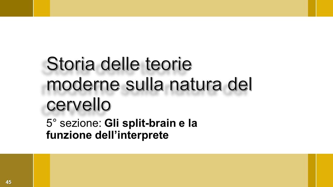 Storia delle teorie moderne sulla natura del cervello